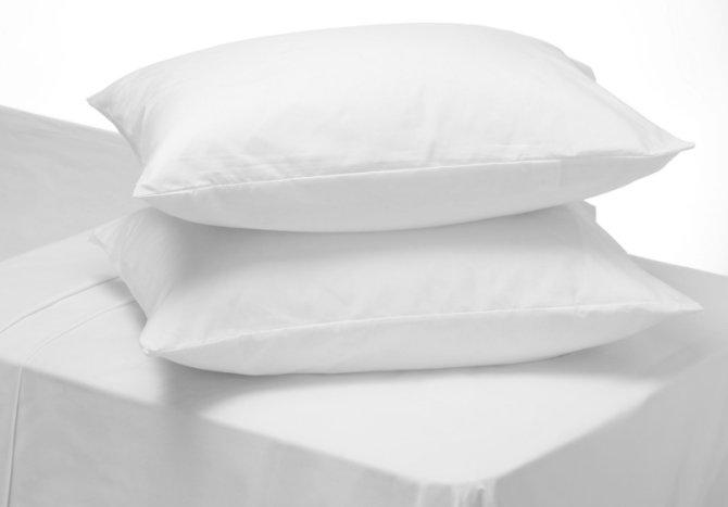 Ravno platno jastučnica